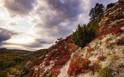 Thema beim Fotokurs: Herbst und Langzeitbelichtung